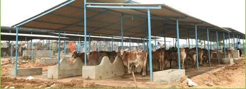 Animal Shed In Pakistan Online Shed Kisanlink